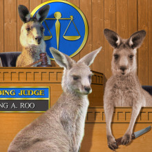 Kangaroo Court Retaliation Against Blogger for Exposing Public Corruption